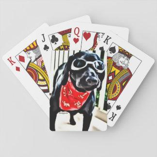 Jogo De Baralho Cartões de jogo com o BlackDogLuke nos óculos de