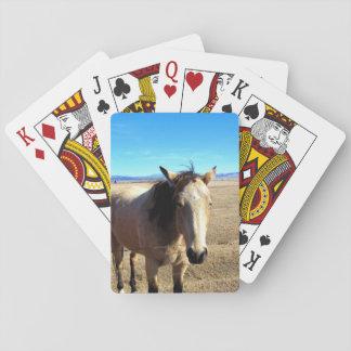 Jogo De Baralho Cartões de jogo do cavalo