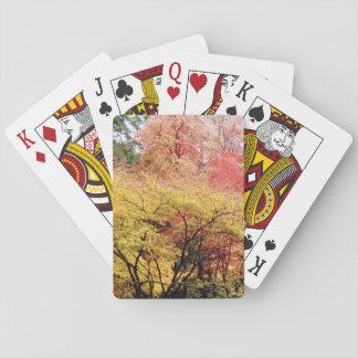 Jogo De Baralho Cartões de jogo em cores da queda