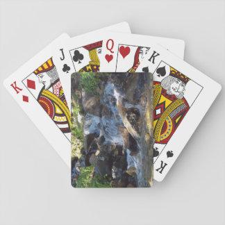 Jogo De Baralho Cartões de jogo pequenos do córrego da floresta