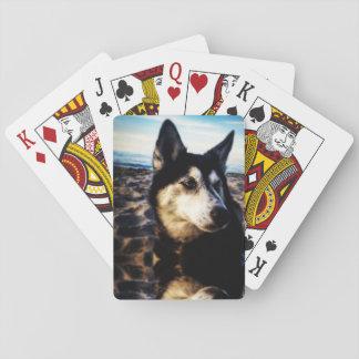 Jogo De Baralho Cartões de jogo roncos da praia