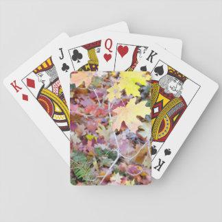 Jogo De Baralho Cartões de jogo selvagens dos bordos de New mexico