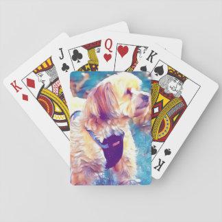 Jogo De Baralho Cobre, os cartões de jogo de Havapookie
