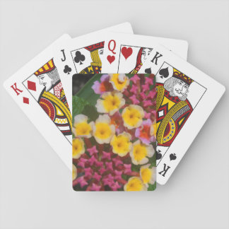 Jogo De Baralho Flores tropicais amarelas pequenas com botões