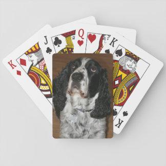 Jogo De Baralho Foto do cão do Spaniel de Springer inglês