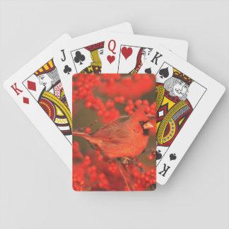 Jogo De Baralho Homem cardinal do norte vermelho, IL