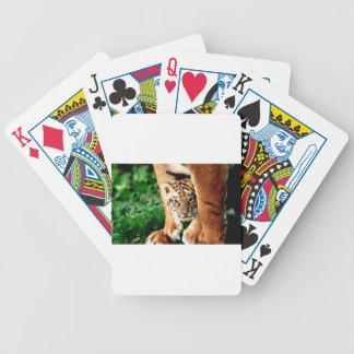Jogo De Baralho O tigre Cub de Bengal espreita para fora