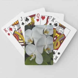 Jogo De Baralho Orquídeas brancas do Phalaenopsis florais