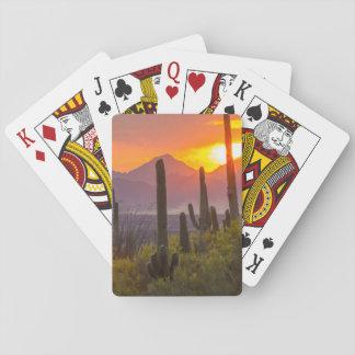 Jogo De Baralho Por do sol do cacto do deserto, arizona