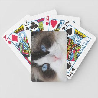 Jogo De Baralho Querido Eyed azul do gato do gatinho