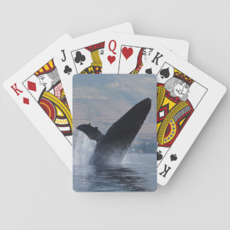Jogo De Baralho rompimento da baleia de humpback