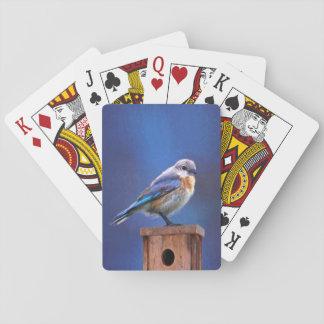 Jogo De Carta Bluebird (fêmea)