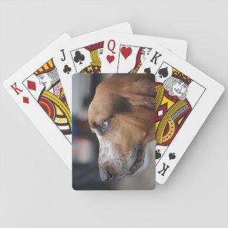 Jogo De Carta Cartões de jogo do cão