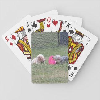 Jogo De Carta Cartões de jogo do cobre e da moeda de um centavo