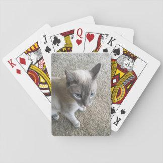 Jogo De Carta Cartões do gato!