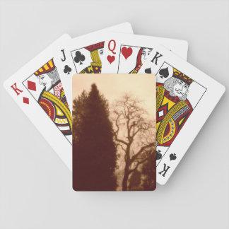 Jogo De Carta Cartões do padrão das árvores do parque