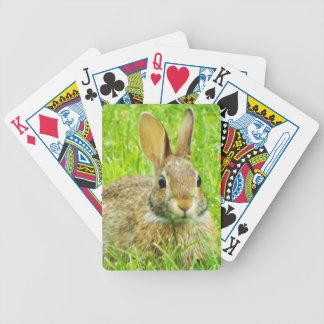 Jogo De Carta coelho