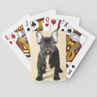 Jogo De Carta Filhote de cachorro do buldogue francês