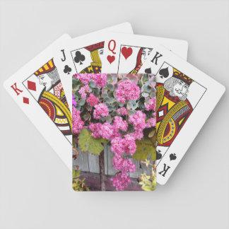 Jogo De Carta Flores cor-de-rosa do Stonecrop do penhasco
