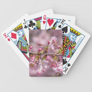 Jogo De Carta Flores de cerejeira
