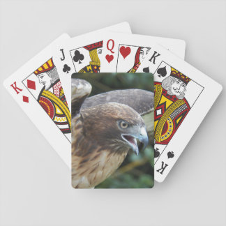 Jogo De Carta foto Vermelho-atada do falcão