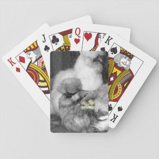 Jogo De Carta Galinhas preto e branco de Silkie com pintinhos