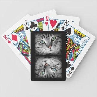 Jogo De Carta Gato de tigre cinzento Eyed verde