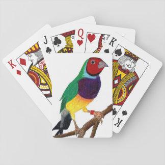 Jogo De Carta ~ original da arte do ~ do passarinho de Gouldian