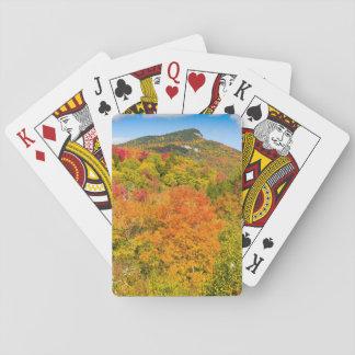 Jogo De Carta Paisagem Floresta Jogos de mapas