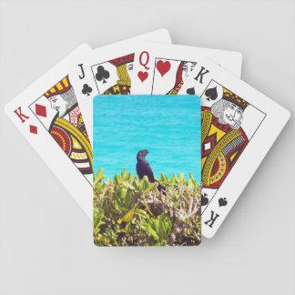 Jogo De Carta Pássaro preto pequeno bonito