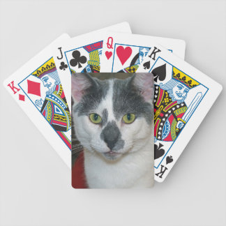 Jogo De Carta Senhor Calça