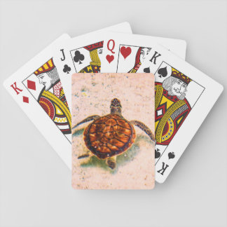 Jogo De Carta Tartaruga pequena bonito