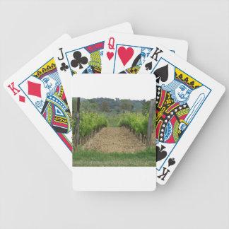 Jogo De Carta Vinhedo no primavera. Toscânia, Italia