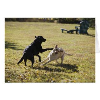 Jogo dos cães cartao