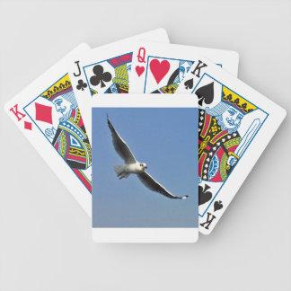 Jogos De Baralho As gaivotas são pássaros bonitos