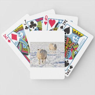 Jogos De Baralho Dois carneiros que estão na neve durante o inverno