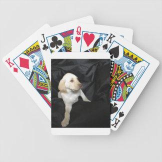 Jogos De Baralho Filhote de cachorro amarelo Sadie do laboratório