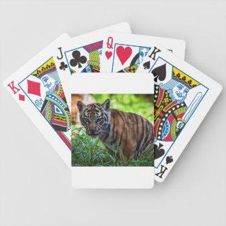 Jogos De Baralho Tigre Cub de Sumatran dos alugueres