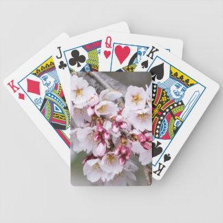 Jogos De Baralhos Flores de cerejeira