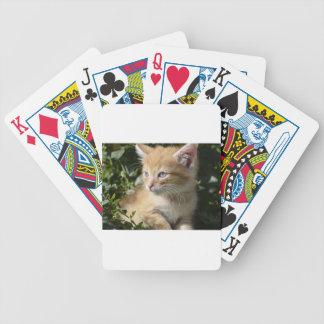 Jogos De Baralhos gatinho