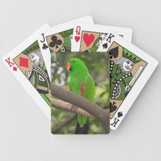 Jogos De Baralhos Retrato verde do papagaio