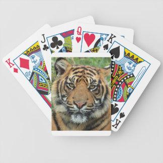 Jogos De Baralhos Tigre adulto