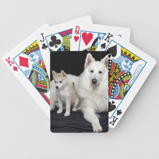 Jogos De Cartas cães