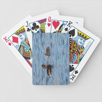 Jogos De Cartas Grebe pequeno e pintinho