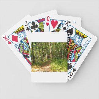 Jogos De Cartas Kevin o Dalmatian