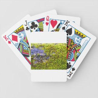 Jogos De Cartas madeira verde abstrata do moss_on no inverno