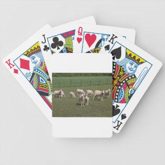 Jogos De Cartas Rebanho dos carneiros