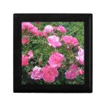 Jóia/caixa de presente cor-de-rosa dos rosas