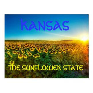 """Kansas """"o cartão de State do girassol"""