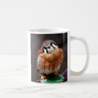 Kestrel curioso caneca de café